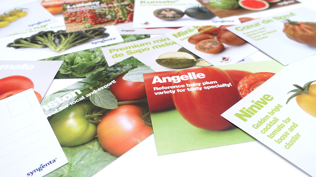 Stand-Design-Syngenta-Fruit-Logistica-Edition