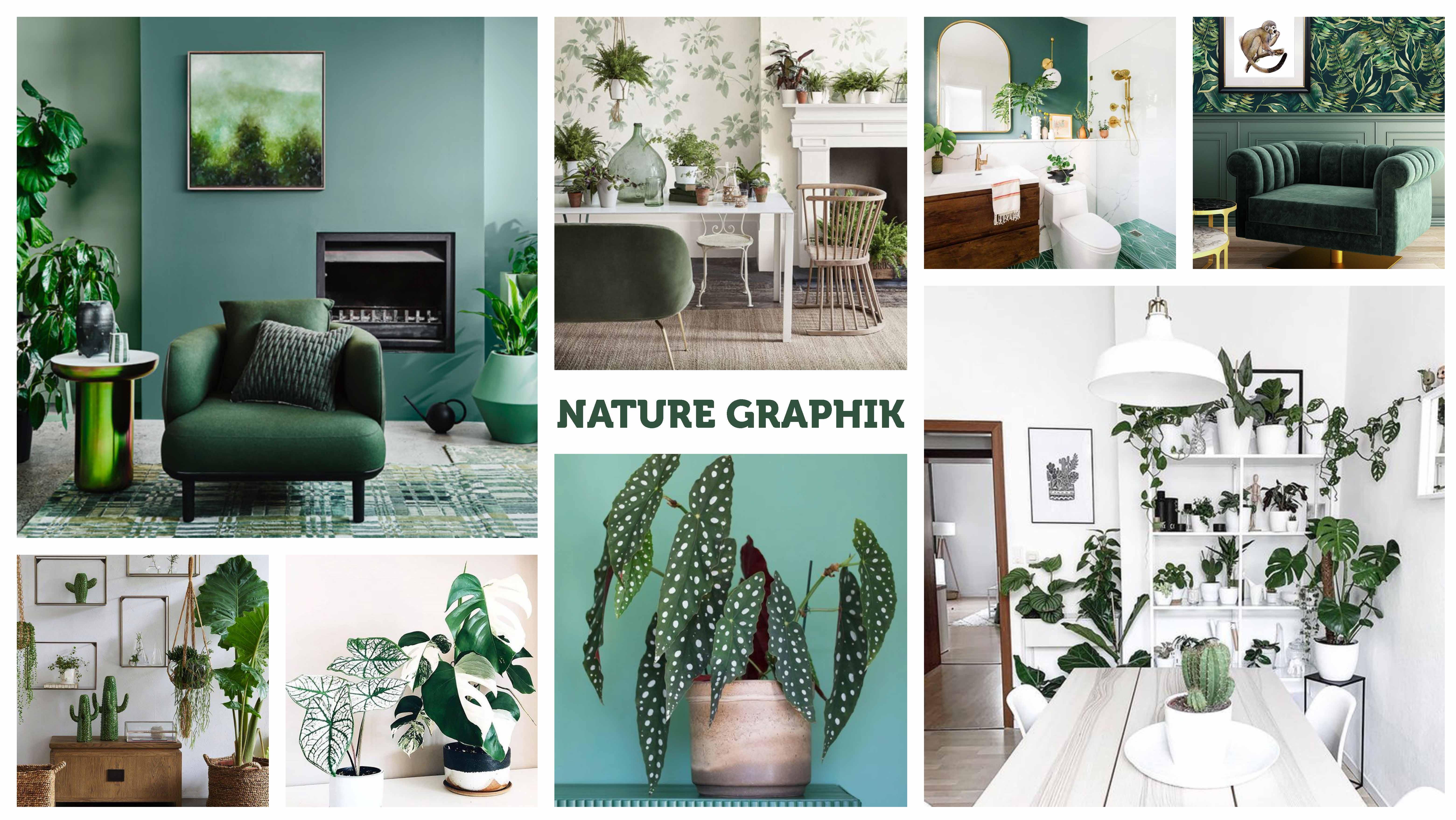 MOODBOARD-Nature Graphik